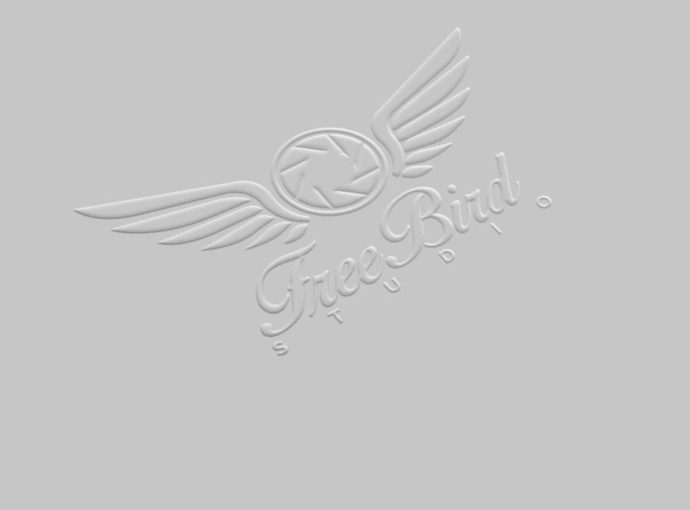 Freebird Studio